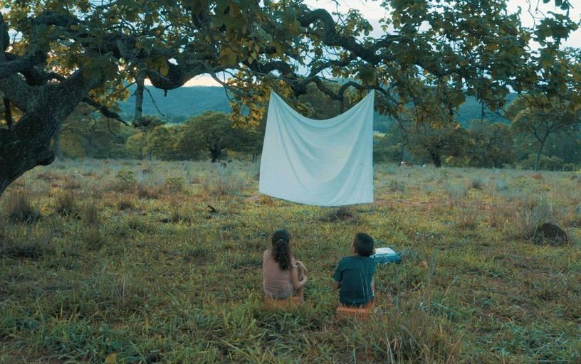 Imagem colorida de um campo de esverdeado. Nos galhos de uma árvore, está pendurado um tecido branco, formando uma espécie de tela. Diante dela, estão duas crianças sentadas, olhando para ela.